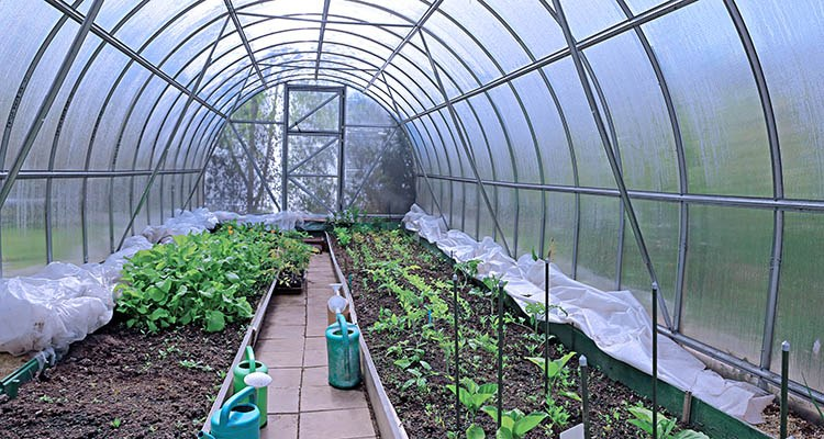 Peachy Greenhouse Covers Extend Your Winter Gardening Season Home Interior And Landscaping Mentranervesignezvosmurscom