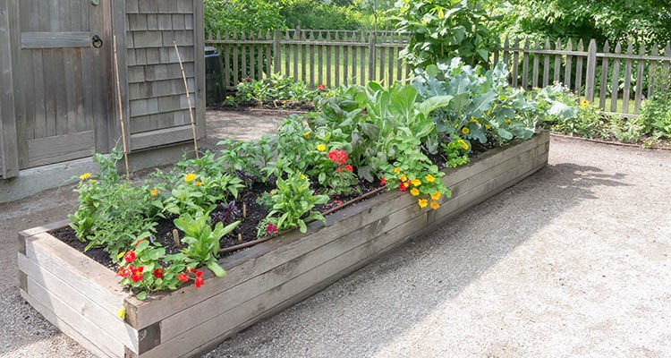 Why raised garden bed liners are a necessary layer - Safest material for raised garden beds ...